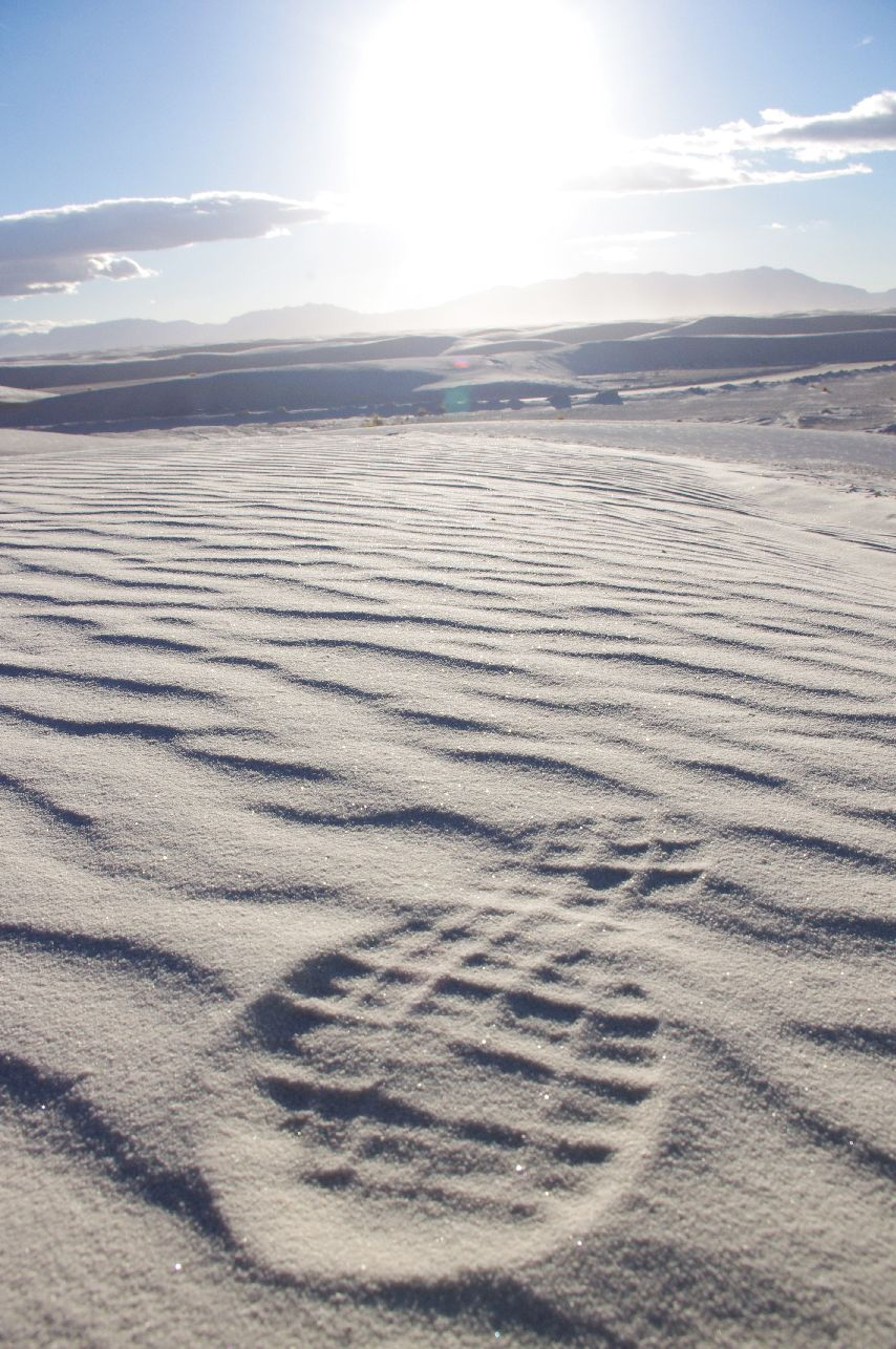 white sands ashton morris