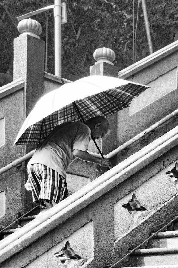batu cave stairs umbrella ashton morris