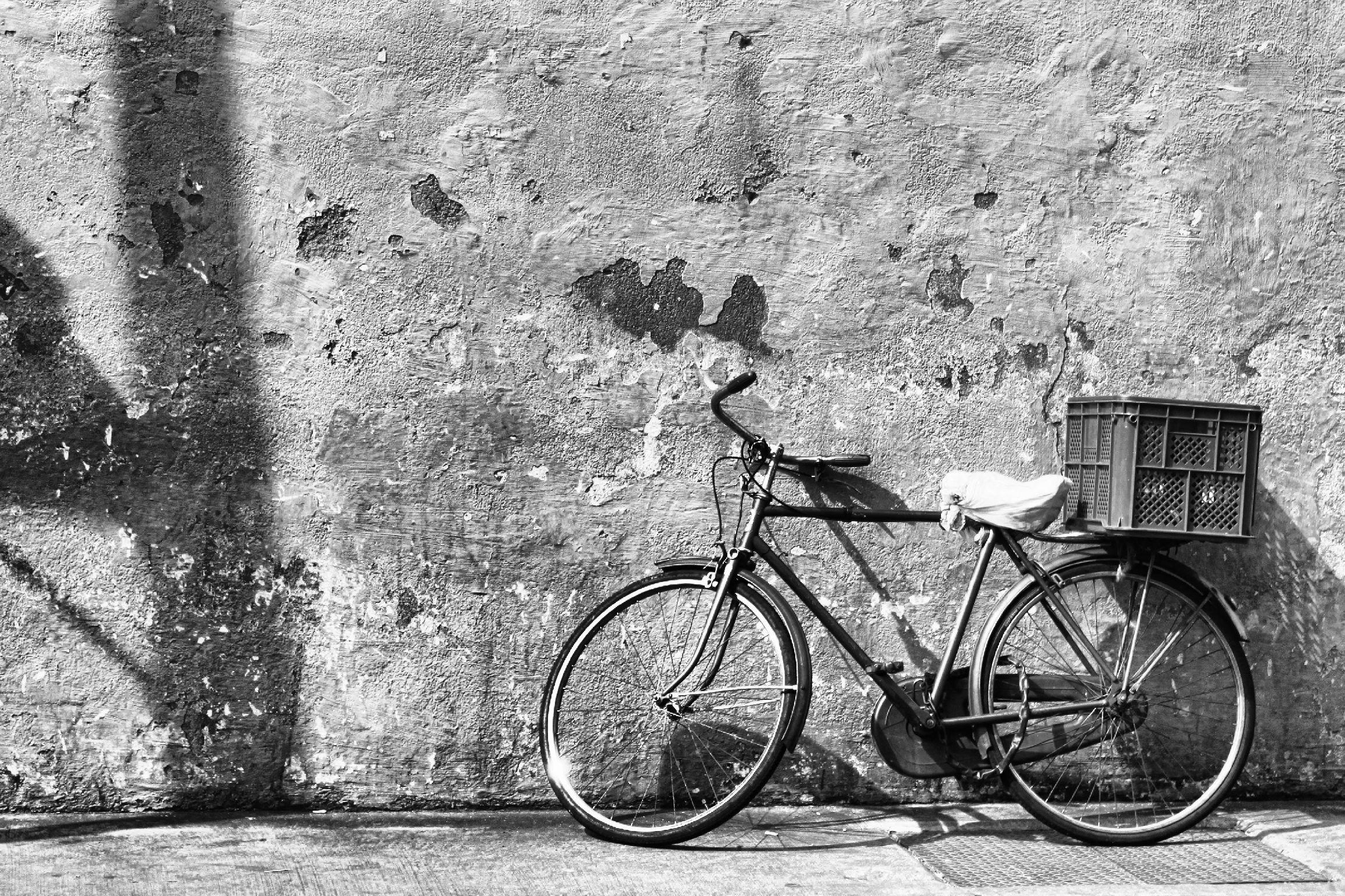 lonely bike ashton morris